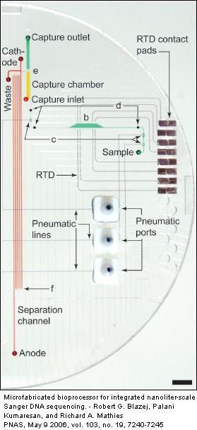 sekwnecjonowanie DNA