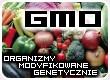 GMO Organizmy transgeniczne